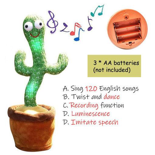 Picture of Dancing Cactus