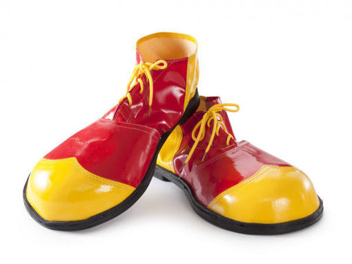 Picture of Clown Funny Shoes