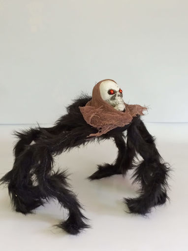 Picture of Spider With Skeleton Head